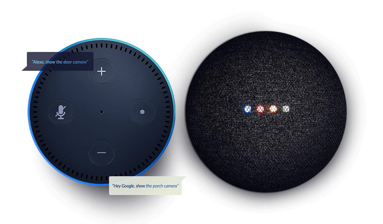 Amazon Echo Dot and Google Home Hub Mini