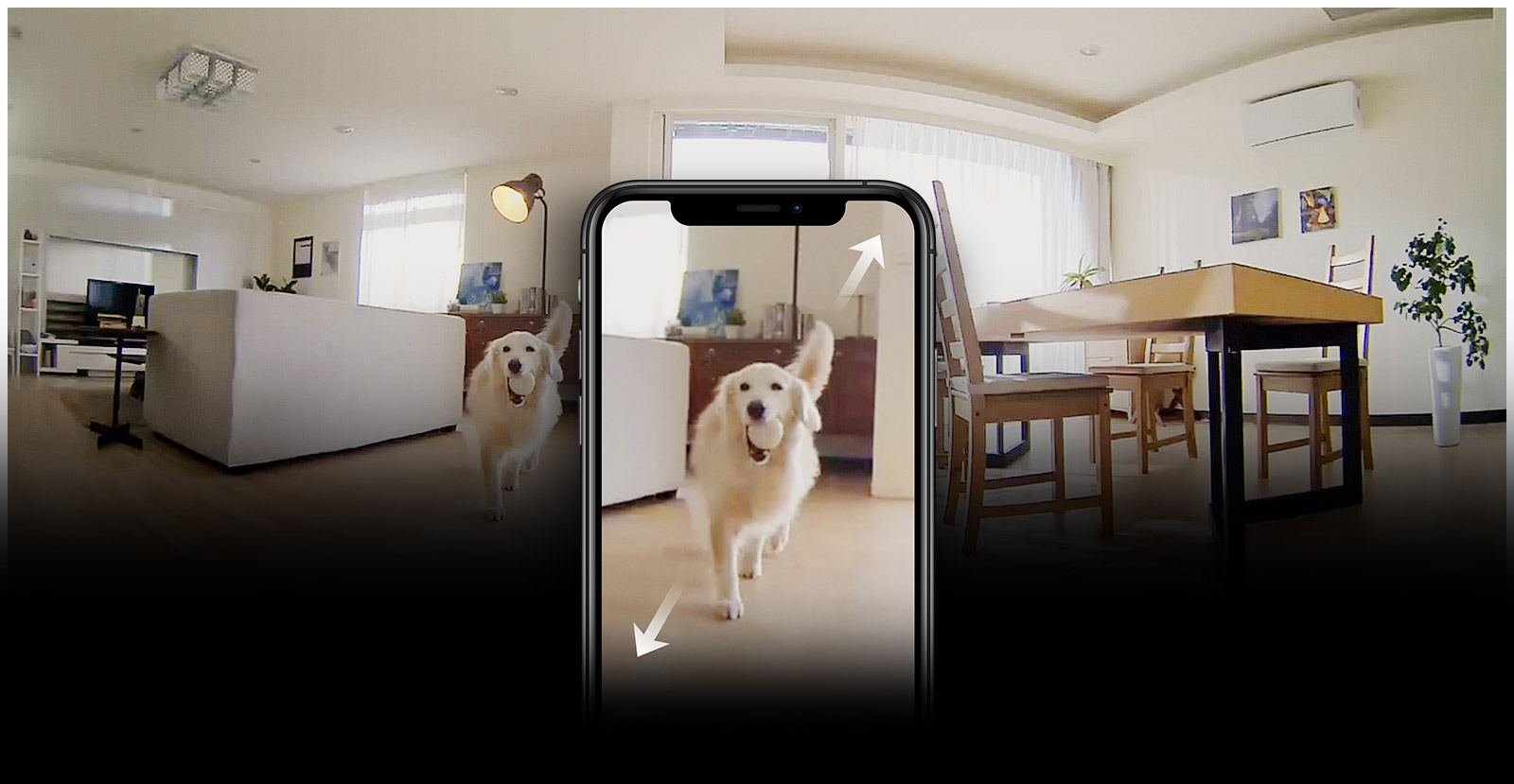 Phone showing security camera footage of pet dog and zooming in