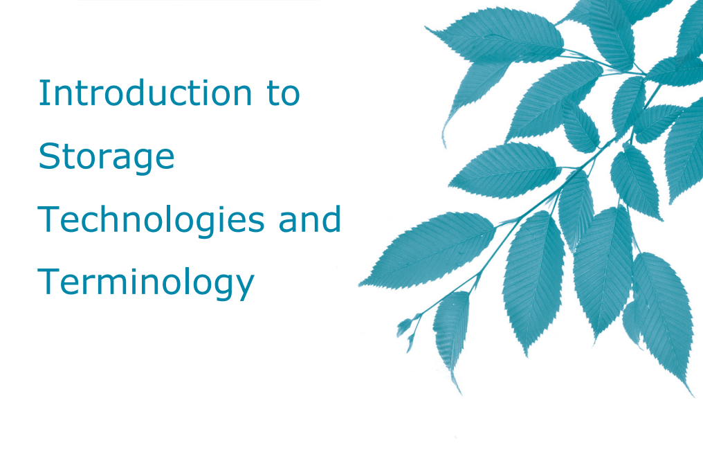 Introduction to Storage Technologies and Terminology Application Brief