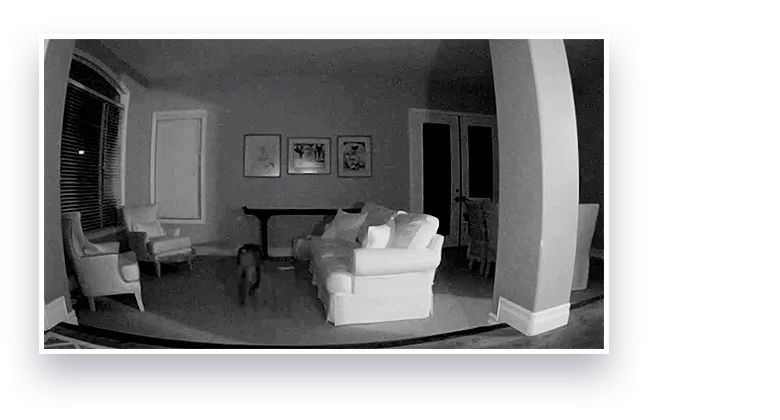 Security Camera with night vision